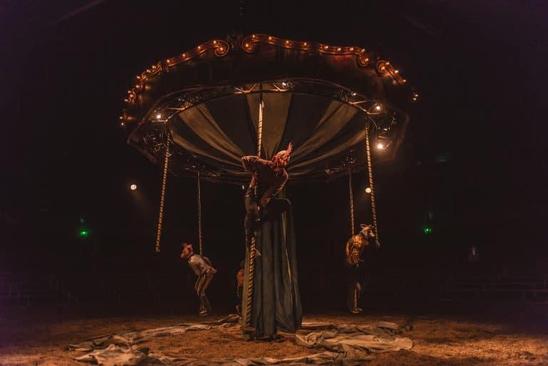 Des psectacles de cirque equestre en alsace