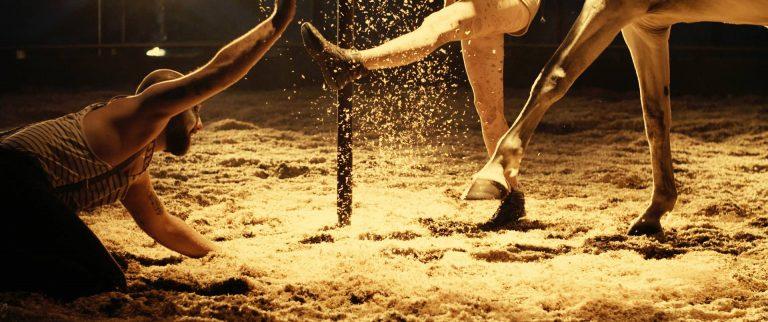 La cie Equinote propose des spectacles de cirque equestre